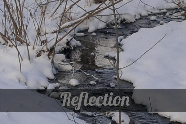 ReflectionWinterBrook
