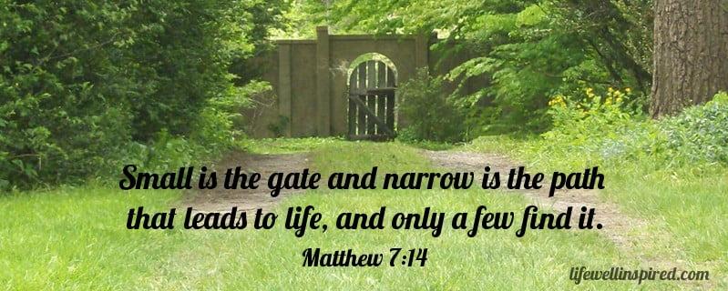 Matthew 7-14
